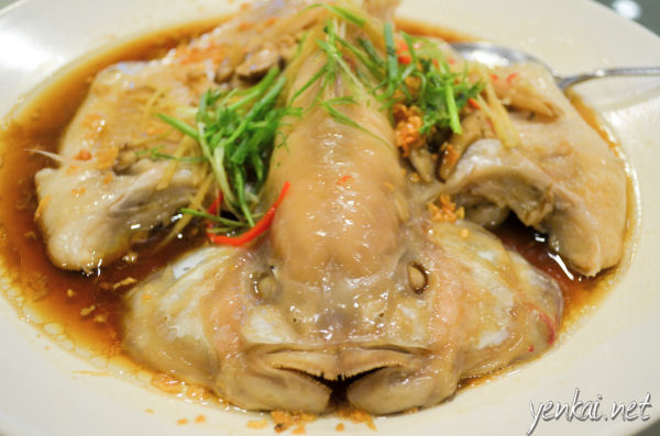 Steamed Tilapia. This was a huge fish. The gravy is rich and savoury, not just a flat soya sauce taste.