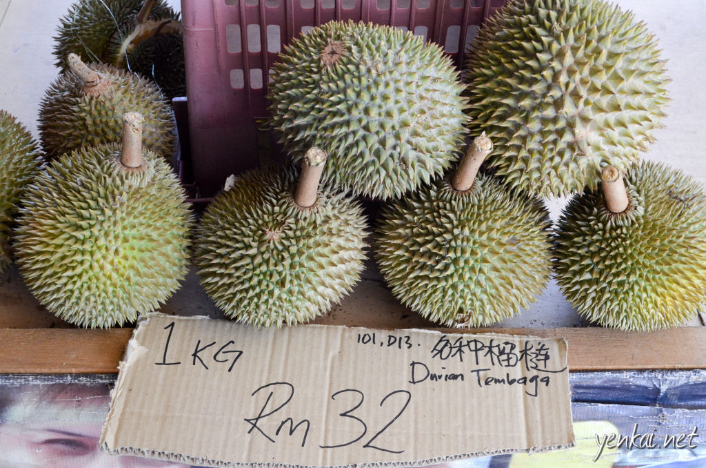 I'm not sure why these Durians are called Tembaga, which means Copper.