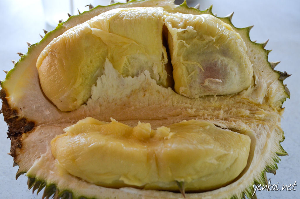 Supposedly XO Durian from Pahang. It was not sweet (which should be the case for XO), and also too soft, but fresh enough.