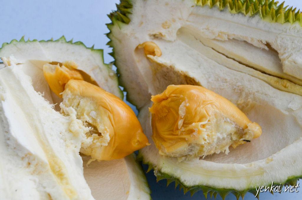 JB Durian trip 2