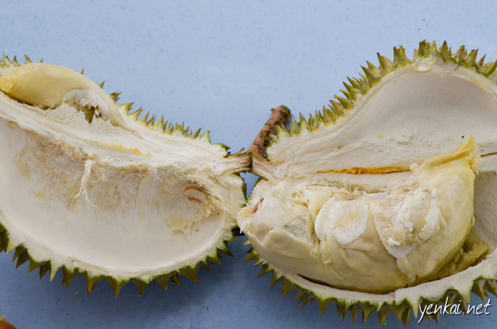 Kampong durian. The flesh was a little lumpy, and it was not as aromatic as the special breed Durian, but at only RM 15 each, it was not bad for the price
