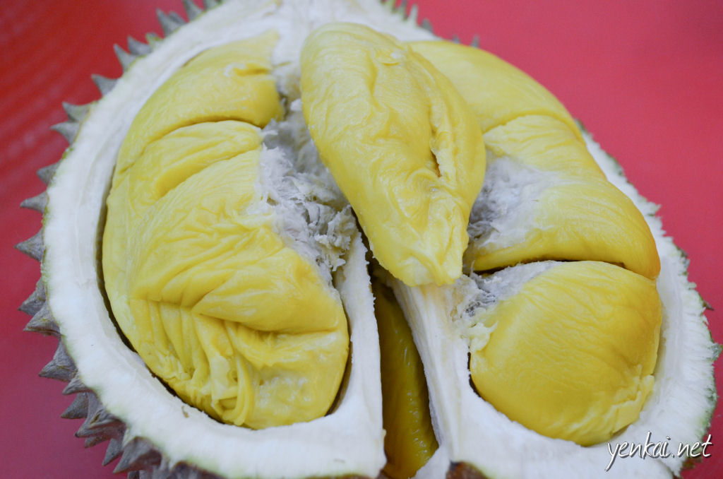 Musang King (Mao Shan Wang). Truly the King of Durians. Unbeatable in fragrance, complexity and texture. The seeds are typically quite small (see above), making them very worthwhile despite the higher price. We were given a special price of RM45/kg. This was far far better than Johor Musang King.