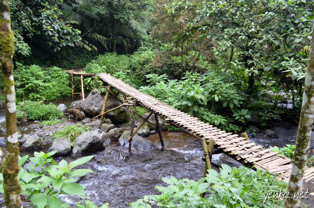 I've never seen such a pretty Bamboo bridge! The ones we have are purely utilitarian