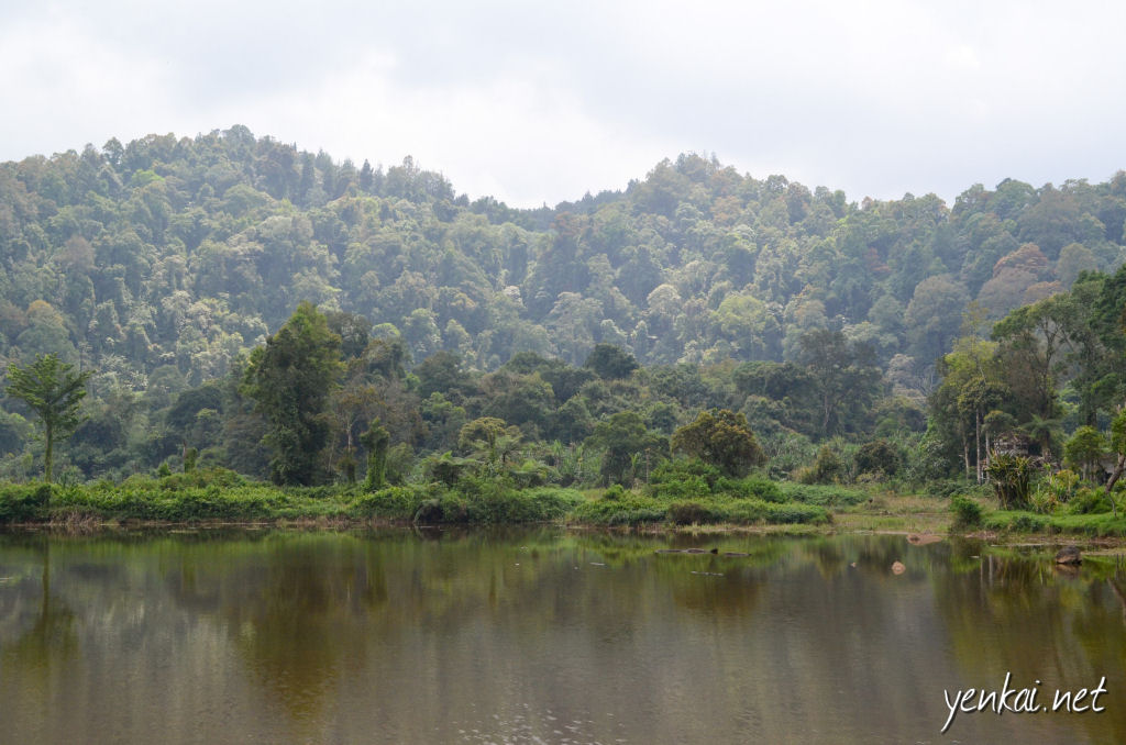 The water is still enough to mirror hills. The hills are low enough to let light come through, illuminating the trees and shrubs in such a way as to bring up a contrasty and three dimensional feel to the place. The irregular types of trees by the lake makes it feel like it's a tended garden.