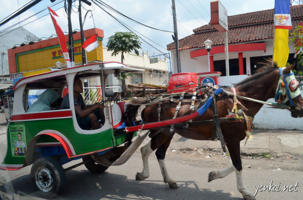 Horse drawn carts, known as Delman, are still popular in Indonesia, even in Surabaya, the second largest city in Indonesia