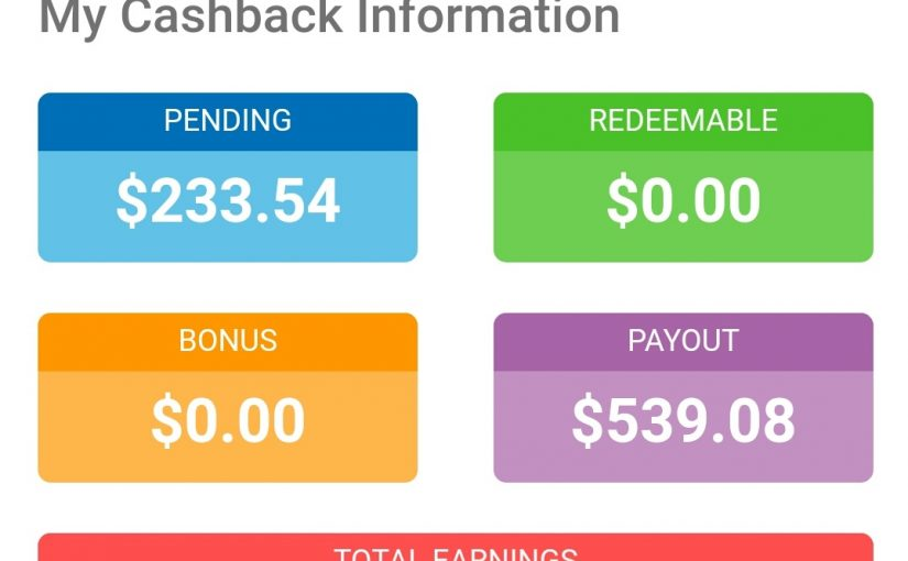 Shopback $500 milestone